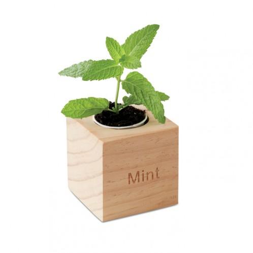 """Mėta medinėje dėžutėje """"Menta"""""""